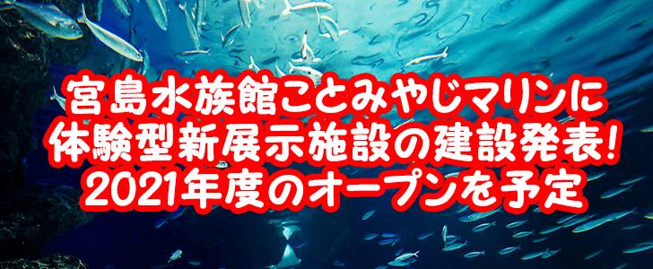 宮島水族館(みやじマリン)体験型展示施設の建設予定を発表!2021年度のオープンを目指す!